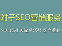 最新网站seo优化教程,百度云SEO自学视频免费分享
