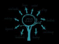 网站排名优化最重要因素:思维-实践