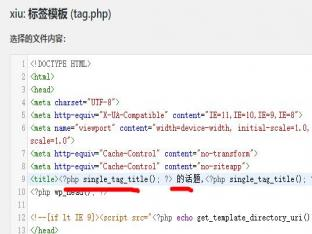 wordpress标签页面自定义标题代码